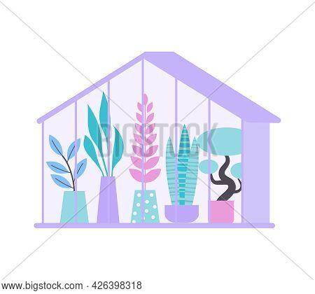 Floristry Flat Icon With Potted Plants In Greenhouse Or Flower Shop Vector Illustration