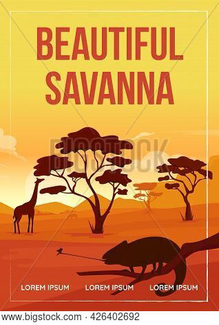 Beautiful Savanna Poster Flat Vector Template. Wildlife Experiences On Vacation. Brochure, Booklet O