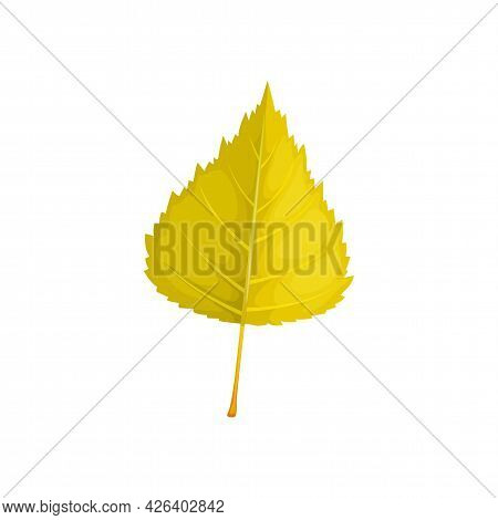 Leaf Of Autumn Tree, Fall Foliage Isolated Vector Icon. Poplar, Birch Or Elm And Linden Tree Dry Gre