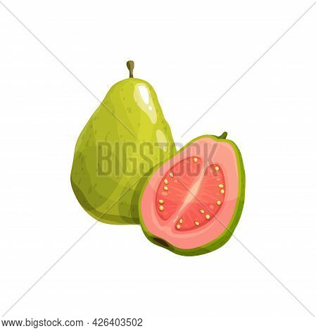Guava Fruit, Vector Fresh Tropical Plant. Isolated Whole And Half Natural Exotic Fruit With Pink Jui