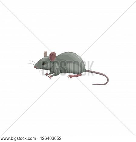 Mouse Icon, Pest Control, Rodents Extermination And Deratization Service, Isolated Vector. Mouse Rod