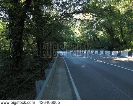 An Asphalt Road With Deciduous Forest On Both Sides. South Road Serpentine