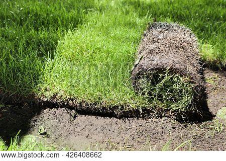 Rolled Grass Sod On Ground In Garden