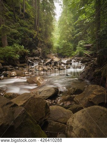 River Stream Waterfall In Forest Landscape. River Stream