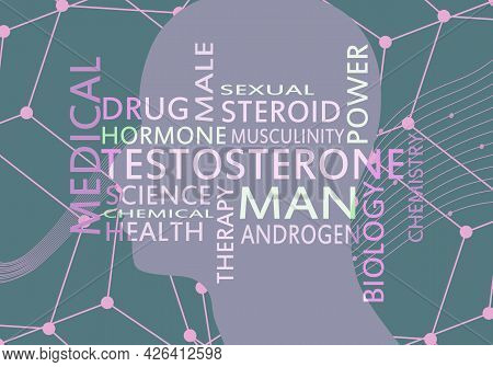 Hormone Testosterone Tags Overlayed On The Silhouette Of The Face