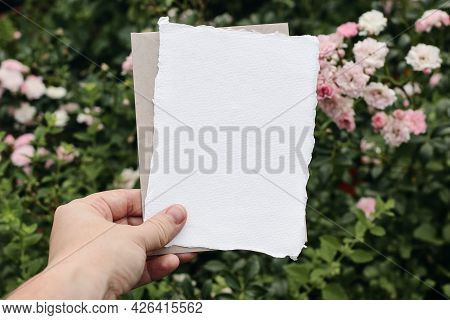 Womans Hand Holding Blank Greeting Card And Craft Paper Envelope. Pink Roses Flowers In Garden. Mood