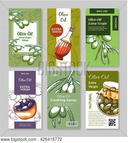 Collection Of Package Vertical Label Olives Vector Flat Sticker Organic Olive Oil Extra Virgin