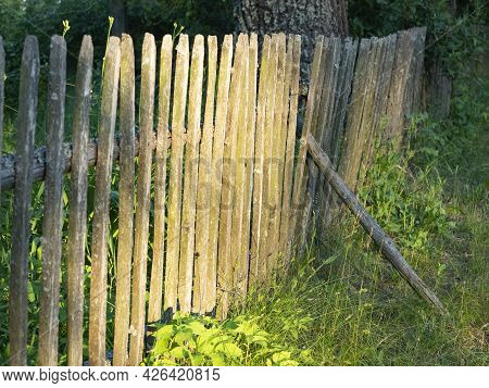 Close-up Of An Old Wooden Fence In The Countryside In The Evening At Sunset. Village Landscape.