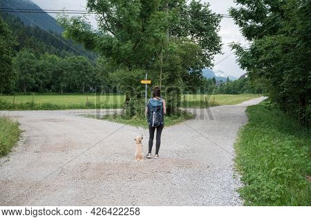 View From Behind Of A Young Woman With Her Dog Standing At A Crossing Of Trails In Beautiful Green S