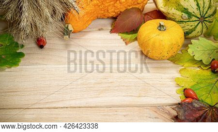 Fall Trendy. Natural Harvest With Wheat Grain Ear Orange Pumpkin, Fall Dried Leaves, Red Berries And