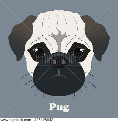 Pug. Print With A Beautiful Dog With A Background
