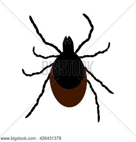 Mite Icon Isolated On White Background. Wild Or Domestic Tick Parasite. Flat Cartoon Mite Icon Symbo