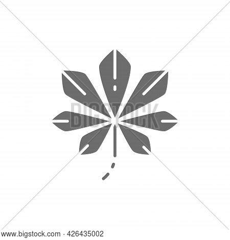 Chestnut Tree Leaf, Kyiv Chestnuts Gray Icon.