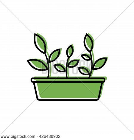 Garden Box With Seedlings, Black Outline, Color Fill. Simple Color Icon Of Young Sprouts With Leaves