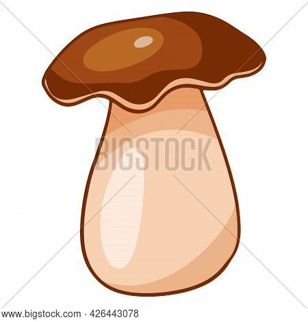 Vegetarian Food. Edible Porcini Mushroom. Cartoon Style.