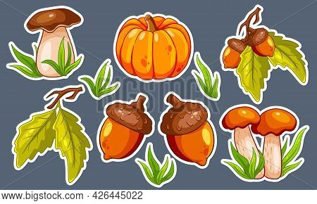 Autumn Set. Mushrooms, Pumpkin, Acorns, Grass, Oak Leaves.