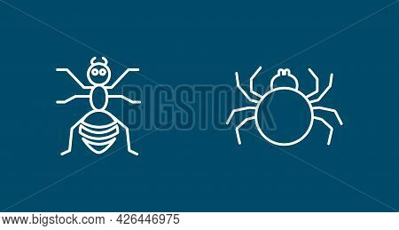 Insects Line Icon Set With Spider, Ant. Insects Line Icon Set With Spider, Ant.