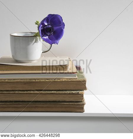 A Blue Anemone In A Ceramic Cup On A Stack Of Old Vintage Books Lying On A Mantelpiece. Copy Space.
