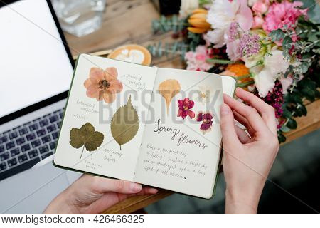 Notebook with pressed leaves and flowers