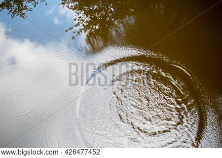 Reflection Of A Blue Sky And Trees On Serene Water Is Disturbed By A Large Splash And Concentric Rip