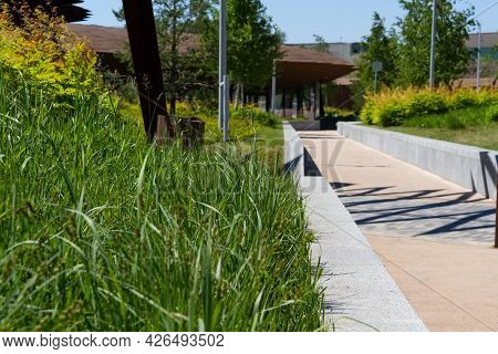 Walking And Jogging Path In The City Park. The Landscape View Of The Park Suitable For Promenade.