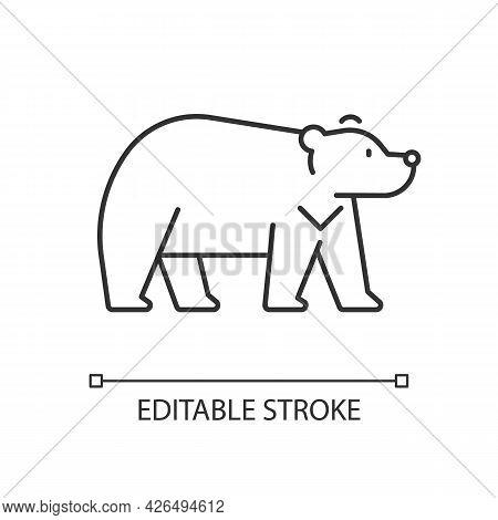 Formosan Bear Linear Icon. White-throated Taiwanesse Mammal. Asiatic Wildlife. Thin Line Customizabl