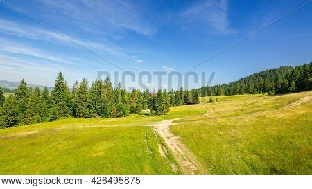 Forested Hill Of Carpathian Mountains. Trail Through The Meadow. Sunny Evening With Blue Sky Above T