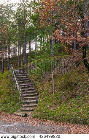 Wooden stairs on a grassy hillside. The picturesque mountain slopes are covered with coniferous forest. Magnificent Umbria in December