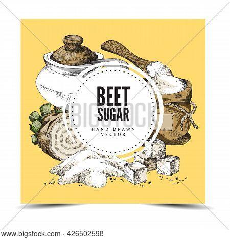 Poster With Beet Sugar - Beetroot, Cubes Refined Sugar, Full Sack And Sugar Bowl