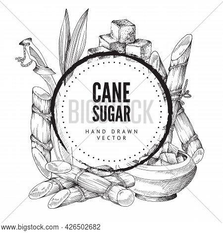 Cane Sugar Decorative Background Or Frame Engraving Vector Illustration Isolated.