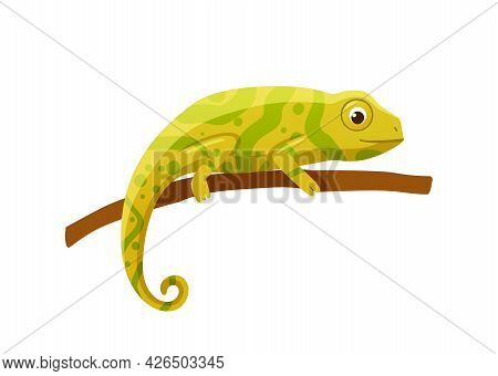 Yellow Lizard Or Chameleon With Swirling Tail Flat Vector Illustration Isolated.