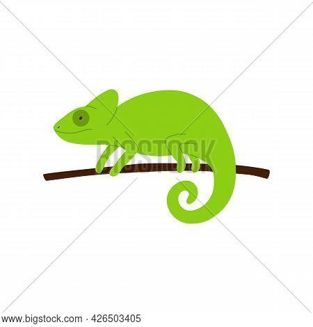 Green Minimalist Style Chameleon Lizard On Branch Vector Illustration Isolated.