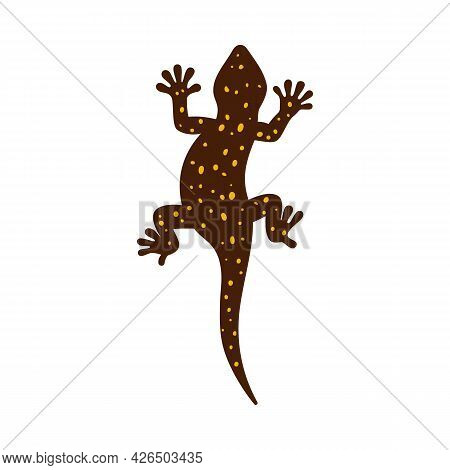 Top View Of Gecko Or Salamander Lizard Flat Vector Illustration Isolated.