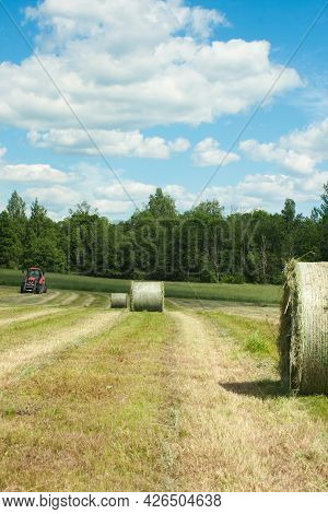 Agricultural Field During Harvesting And Making Hay Bales For Livestock