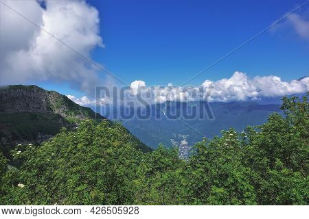 White Clouds Lie On The Tops Of The Mountain Range. Clear Blue Sky. In The Foreground Are Shrubs Wit