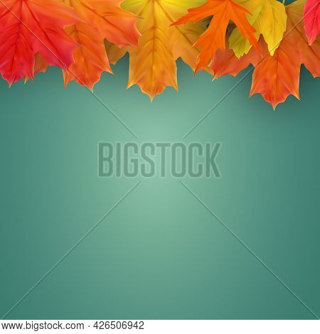 Autumn Natural Background Template With Falling Leaves. Eps10