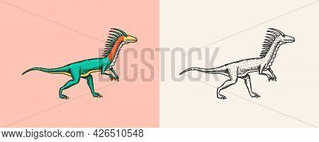 Dinosaurs Deinonychus, Skeletons, Fossils. Prehistoric Reptiles. Engraved Vintage Hand Drawn Sketch