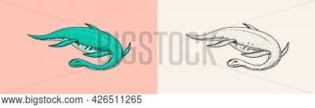 Dinosaurs Elasmosaurus, Mosasaurus, Skeletons, Fossils, Winged Lizard. American Prehistoric Reptiles