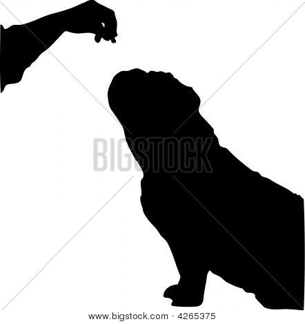 silhouette of english bulldog begging for a treat poster