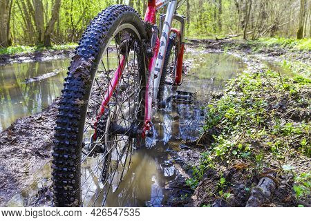 Close-up Of Dirty Wheels And The Bottom Of A Bicycle On Forest Trails. View From Bike Wheel In Puddl