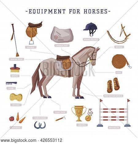 Equipment For Horses Set, Horse Riding Essentials And Grooming Tools Vector Illustration
