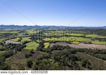 Aerial View Of Sugarcane Paddocks In The Distance Forming A Green Pattern Of Agriculture, Mackay Que