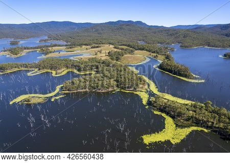 Aerial Over Land, Algae And Dead Trees In Water Catchment Environment Of Teemburra Dam Queensland Au