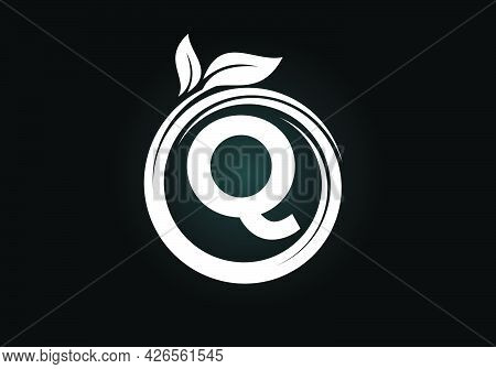 Initial Q Monogram Letter Alphabet In A Spiral With Green Leaves. Font Emblem. Nature Icon Sign Symb