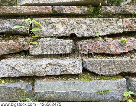 Background Of Old Overgrown Tiles In Close-up. Texture Of Overgrown Stone