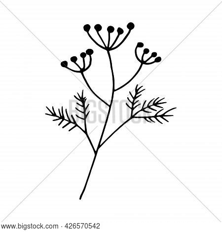 Abstract Flower Icon. Hand Drawn Doodle. Vector, Scandinavian, Nordic, Minimalism Monochrome Plant H