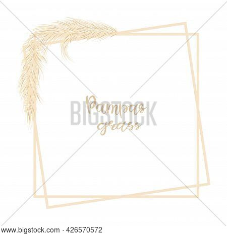Pampas Grass. Decorative Background With Dry Grass In Boho Style. Vector Illustration.