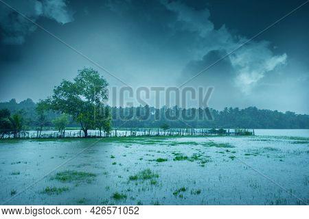 Beautiful Landscape Image With Heavy Rain, Monsoon Rain In Kerala India, Beautiful Image Of Rain, Cl
