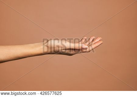 Beautiful woman hand isolated on brown background. Empty open female hand on cream background with copy space. Close up of elegant palm faced upwards with space for your product.