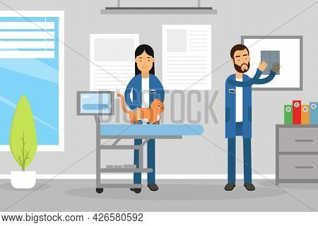 Veterinary Clinic And Medicine With Man Veterinarian Engaged In Diagnosis And Treatment Of Animal Di